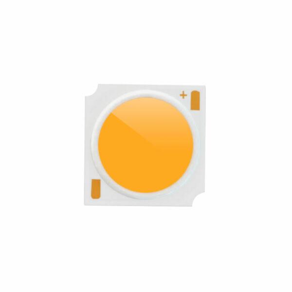 Chip led COB CREE