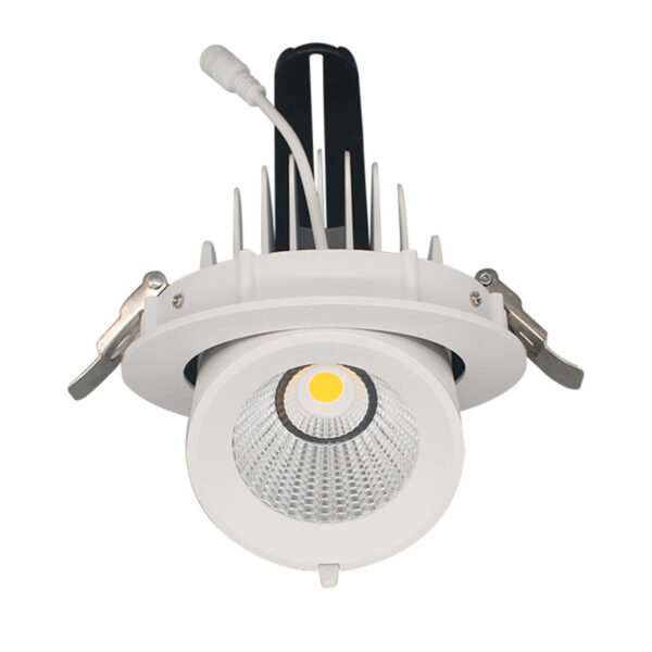 Downlight Led PRICKLUX TUBE 12W driver PHILIPS